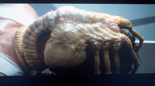 the-facehugger